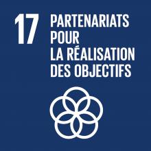 ODD 17 Objectif de developpement durable Partenariats pour la realisation des objectifs